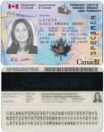 加拿大永久居民出境须刷枫叶卡 (旧版)