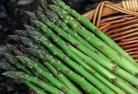 芦笋 Asparagus