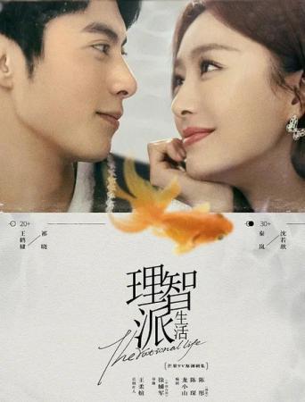 电视剧《理智派生活》秦岚《陪你一起长大》刘涛