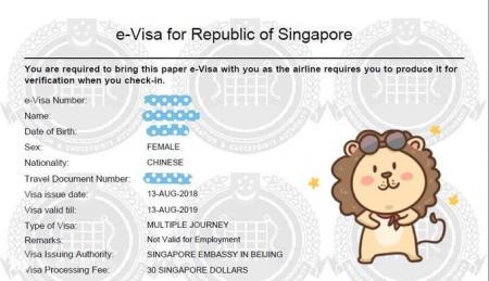 ✪ 申请新加坡旅游电子签证 Machine Readable Zone ID填写