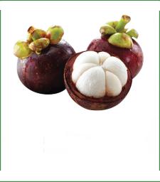火龙果、山竹、腰果是怎么长出来的?