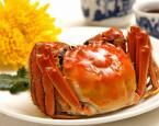 日食一只蟹,胆固醇已超标 (图)