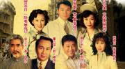 电视剧《再见艳阳天》《爱在有情天》《天长地久》