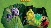 ʚɞ 《昆虫总动员》 微观小世界