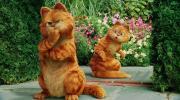 电影♦《加菲猫》猫有九条命