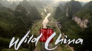 ☄ BBC《Wild China》美丽中国 (Wild系列)